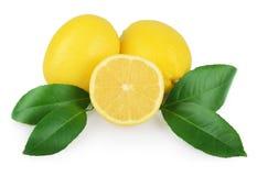 Limão com as folhas isoladas no branco Imagem de Stock Royalty Free