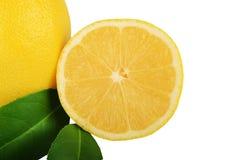 Limão com as folhas isoladas no branco Foto de Stock