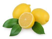 Limão com as folhas isoladas no branco Imagens de Stock Royalty Free