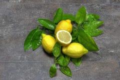 Limão com folhas Fotos de Stock Royalty Free
