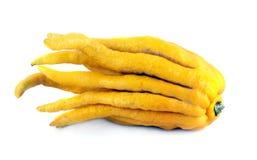 Limão da mão de Buddhas Imagens de Stock Royalty Free