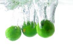 Limão de refrescamento Fotografia de Stock Royalty Free