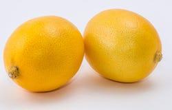 Limão dois no fundo branco Fotografia de Stock