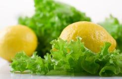 Limão e alface Imagens de Stock