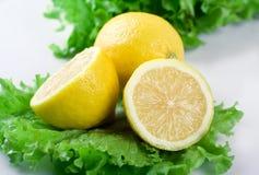 Limão e alface Foto de Stock Royalty Free