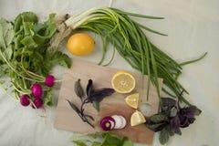 Limão e cebola Fotografia de Stock Royalty Free