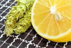 Limão e chá Fotos de Stock Royalty Free