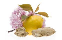 Limão e gengibre isolados no fundo branco imagem de stock royalty free