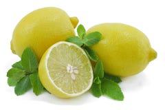 Limão e hortelã. Fotografia de Stock