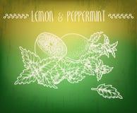 Limão e pastilha de hortelã Fotografia de Stock Royalty Free
