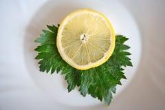 Limão e salsa Imagem de Stock