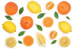 Limão e tangerina com as folhas isoladas no fundo branco Configuração lisa, vista superior Composição do fruto Imagens de Stock