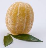 Limão em um fundo branco Imagem de Stock