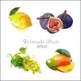 Limão, figos, uva, manga Fotografia de Stock Royalty Free