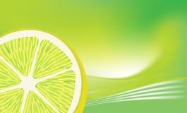 Limão fresco ilustração royalty free