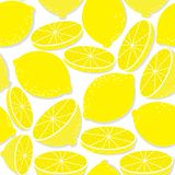 Limão fresco isolado no branco Imagens de Stock Royalty Free
