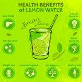 Limão Handdrawn Infographic Fotografia de Stock Royalty Free