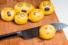 Limão matado Imagem de Stock