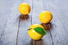 Limão, a melhor vitamina natural Imagem de Stock Royalty Free