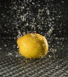 Limão na chuva foto de stock royalty free