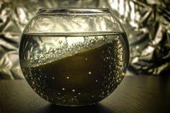 Limão nas bolhas Imagem de Stock Royalty Free