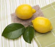 Limão natural limpo foto de stock royalty free