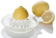 Limão no juicer do citrino imagem de stock