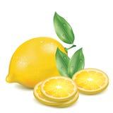 Limão realístico com fatias de limão Fotos de Stock Royalty Free