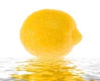 Limão suculento molhado na água. Fotos de Stock Royalty Free