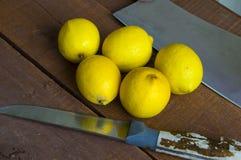Limão suculento sobre a salada e fresco frescos para os peixes, Imagens de Stock Royalty Free