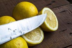 Limão suculento sobre a salada e fresco frescos para os peixes Foto de Stock Royalty Free