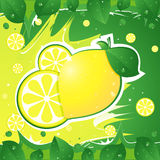 Limón Imagenes de archivo