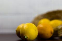 Limón Imágenes de archivo libres de regalías