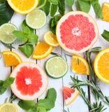 Limón, cal y naranja con la menta y el romero Imágenes de archivo libres de regalías