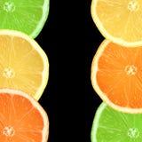 Limón, cal y rebanadas anaranjadas Imagenes de archivo