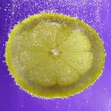Limón chispeante Fotografía de archivo