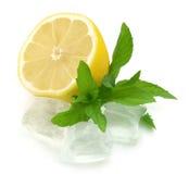 Limón con la menta y el hielo foto de archivo