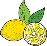 Limón con las hojas Fotos de archivo libres de regalías