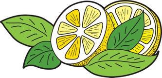 Limón con las hojas Fotos de archivo