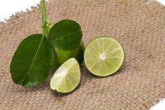 Limón con las hojas aisladas en el fondo blanco imágenes de archivo libres de regalías