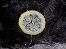 Limón congelado imagen de archivo libre de regalías