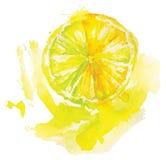 Limón de la acuarela Foto de archivo libre de regalías