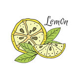 Limón de la historieta Imagen de archivo