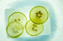Limón del hielo Fotografía de archivo