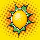 Limón del vector Foto de archivo