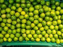 Limón en cesta Imagen de archivo libre de regalías