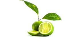 Limón en el fondo blanco Foto de archivo