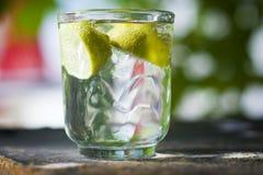 Limón en el vidrio Foto de archivo