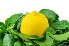 Limón en espinaca imagen de archivo libre de regalías