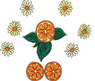 Limón en la rama con las flores Libre Illustration